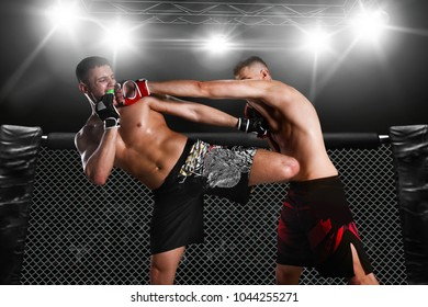 sparring two fighters in the arena