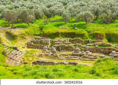 Sparta, Greece Ancient ruins remains in Peloponnese and olive tree garden