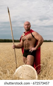 Spartan warrior stands in wheat field with spear and shield. Ancient Sparta concept.