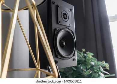 Speaker in office next to gold lamp and green indoor plant