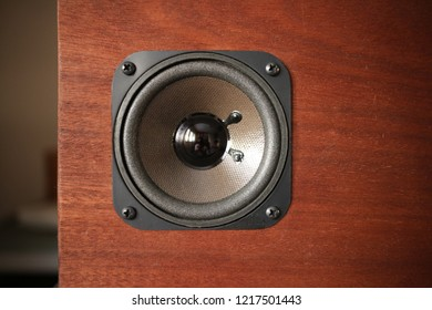 speaker on the wood cabinet
