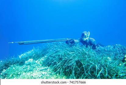 spearfishing in ocean