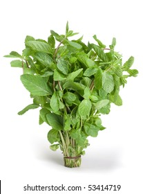 Spearmint bunch leaf isolated on white background