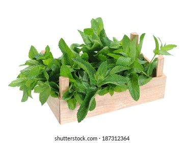 spearmint in wooden crate isolated white background