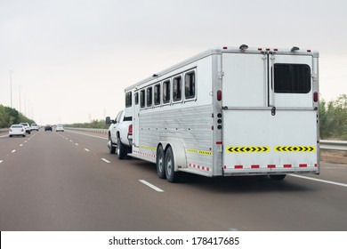 Special built trailer for transporting animals such as camels and horses