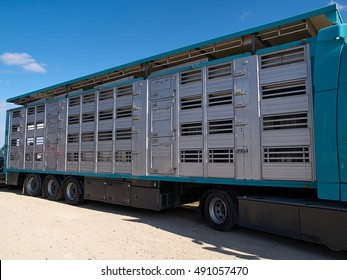 Special design truck and trailer for transportation of pigs from the farm to a slaughterhouse