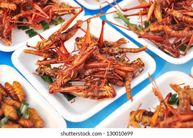Special food , Fried grasshoppers in thailand