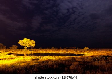 Special pond for wild animals in Namibia Africa. Night scene.