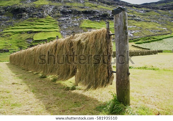 a special scaffolding hanging and dried hay because of rain can not be dried on the substrate. Iceland summer