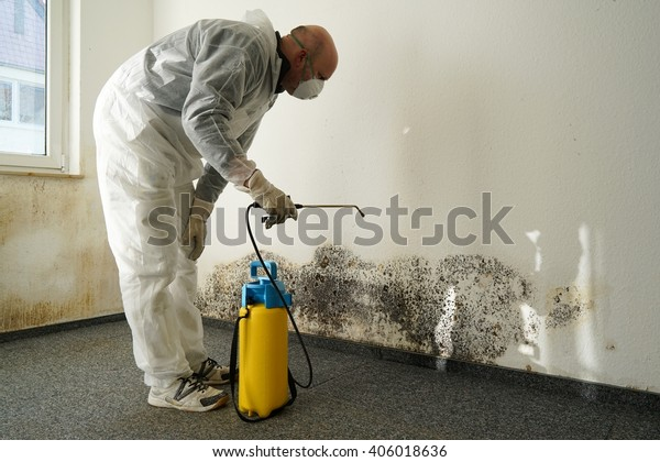 Mold Removal in Moore