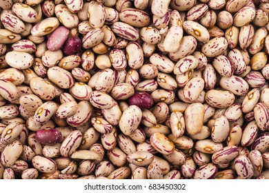 Speckled Kidney Beans Images Stock Photos Vectors Shutterstock