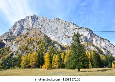 a spectacular autumn in the Dolomites under the Marmolada glacier
