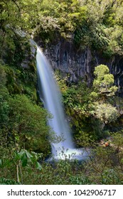 Spectacular Dawson Waterfalls in Egmont National Park, North Island of New Zealand