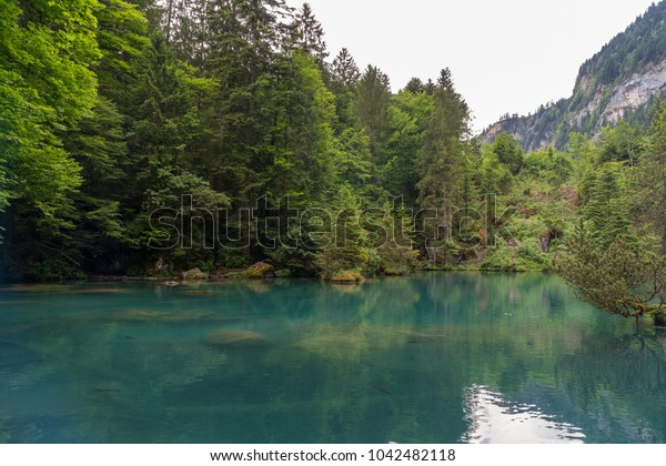 Spectacular panoramic view of the Blausee or Blue Lake nature park in the Bernese Alps, Kandersteg, Bern canton, Jungfrau region, Switzerland