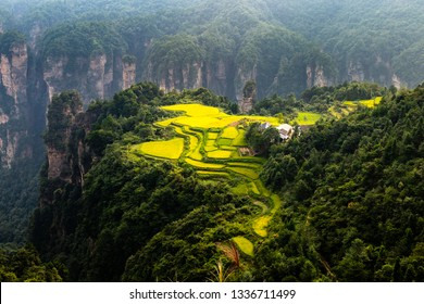 "Spectacular rice field terraces in front of Laowuchang village, in Yuanjiajie area of Wulingyuan National Park, Zhangjiajie, China. This national park inspired ""Avatar"" movie"
