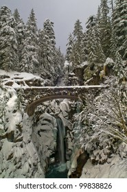 Spectacular Shot of a Christine Falls in Winter - Mt Rainier