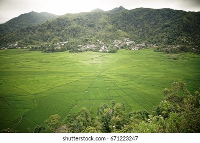 The spectacular spider web rice field around Meler, Ruteng at the island Flores in Indonesia.