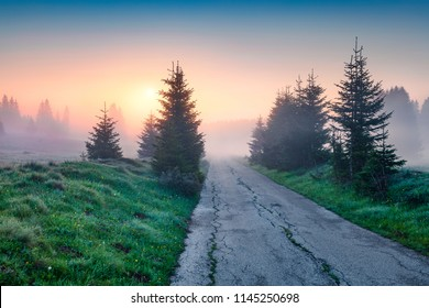 Spectacular summer sunrise in Durmitor Nacionalni Park. Fantastic foggy scene of Montenegro countryside, Zabljak town location. Beautiful world of Mediterranean countries. Traveling concept background
