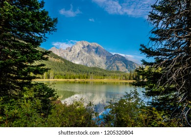 The spectacular Teton mountain range in the background, reflects onto Leigh  Lake, in Grand Teton NP in Wyo. The reflection of the blue sky and encompassing forests onto the lake complete this image.