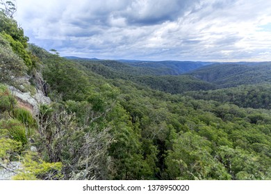 Spectacular view of the escarpment and deep valley clothed with Gondwana Rainforest of the New England High Country in NSW, Australia