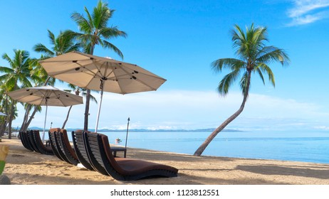 Spectacular view of private exotic beach and oceanfront hotel lounge chairs surrounded by palm trees. Tranquil ocean and beach make for an amazing view from luxury seaside resort on remote island.