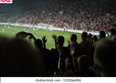 The spectators happily celebrate the good game of their favorite team Slavia Praha in Prague with the only goal of the game with the Dinamo Kiev team.