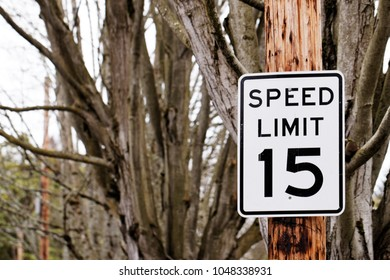 a speed limit 15 traffic sign on a telephone pole on the street next to trees