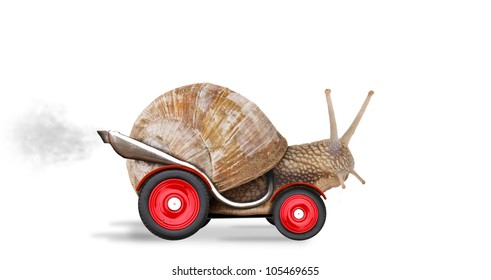 Speedy snail like car racer. Concept of speed and success. Wheels are blur because of moving. Isolated on white background