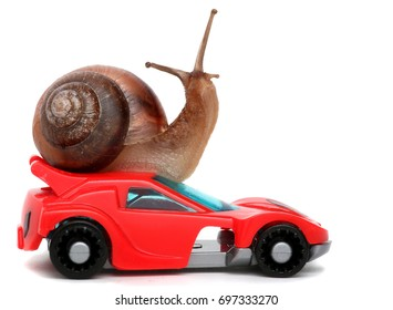 Speedy snail like car racer. Concept of speed and success. Wheels are blur because of moving. Isolated white background