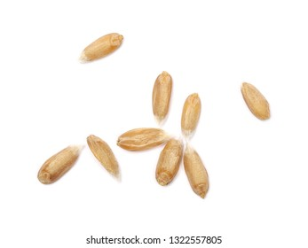 Spelt grain isolated on white background, top view, macro
