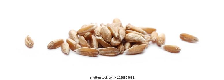 Spelt grains, heap isolated on white background, macro