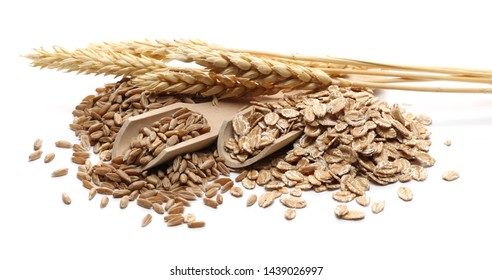 Spelta grain, ear and flakes for breakfast isolated on white background