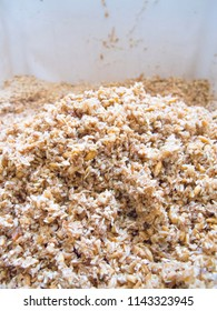 Spent Grain after mashing in a bucket from Homebrew : Craft Beer