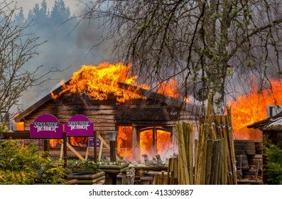 SPEYSIDE HEATHER CENTRE, GRANTOWN ON SPEY, SCOTLAND - 29 APRIL: This is scenes from the fire that totally destroyed the premises of Speyside Heather Centre, Grantown on Spey, Scotland on 29 April 2016