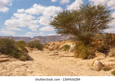 sphere impression of the Israel National Hiking Trail in the Negev Desert