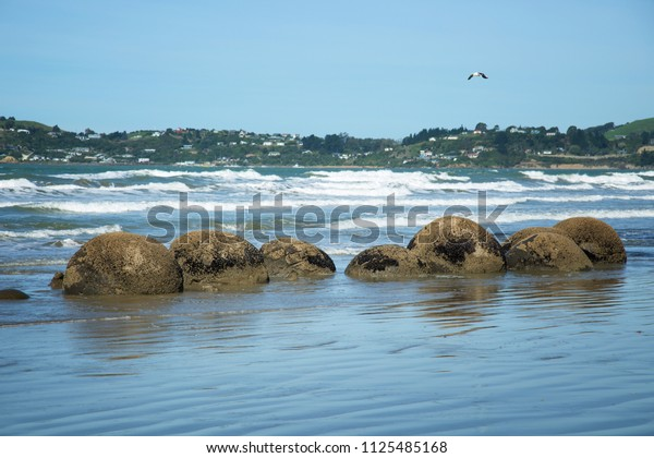 Spheric Moeraki boulders at Koekohe beach in South Island, New Zealand.