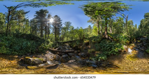 Spherical panorama 360 180 degrees creek in a dense green forest.