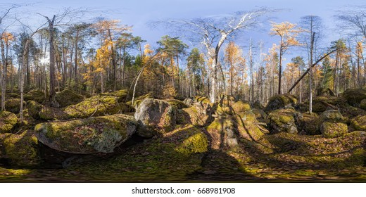 Spherical panorama 360 degrees 180 old moss-covered boulders in a coniferous forest.