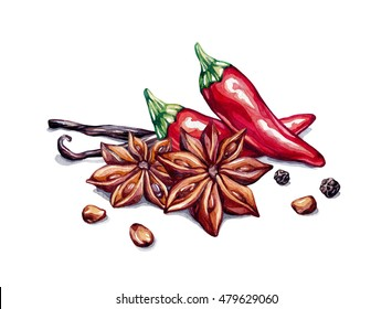 Spice composition. Spice group. Red pepper, star anise, vanilla, pepprcones, anise seed. Watercolor illustration isolated on white background, clip-art.