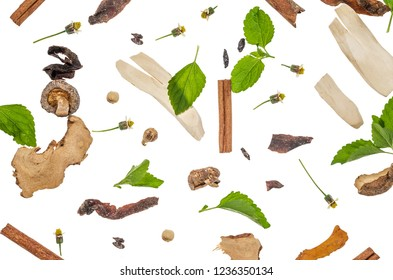 spices leaf isolated on white background, top view