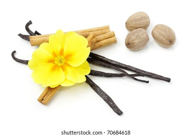 Spices with primrose flower, isolated on white