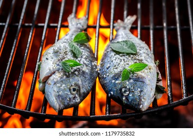 Spicy fish on grill with herbs and salt