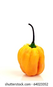 spicy hot pepper(Capsicum chinense ) on a white background