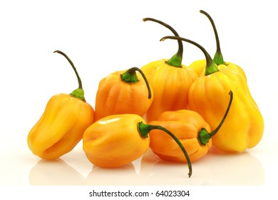 spicy hot peppers(Capsicum chinense ) on a white background