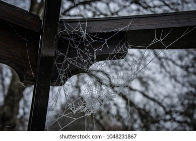 Spider web hanging from wooden poles.