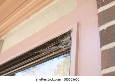 Spider Web on Window Sliding Door