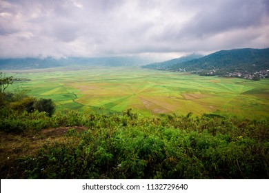 Spider Web Rice Terrace Farm in Flores Indonesia