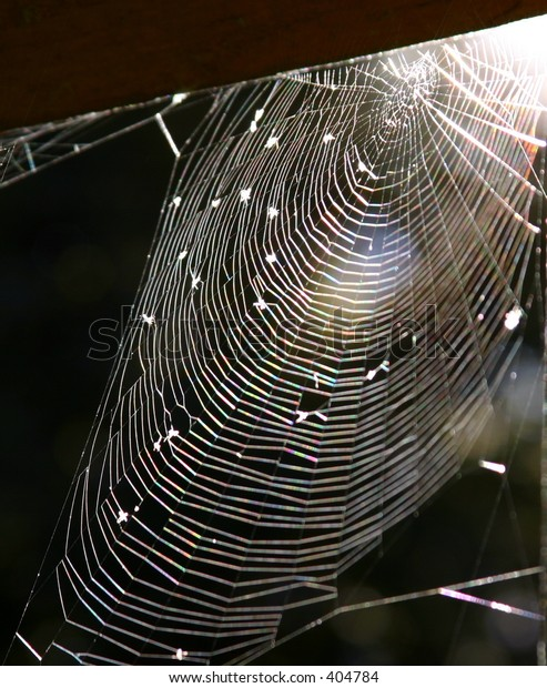 A spider web suitable for Halloween.
