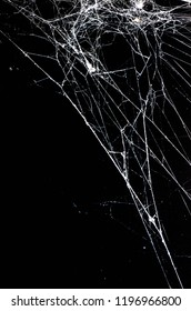 spider web,halloween background