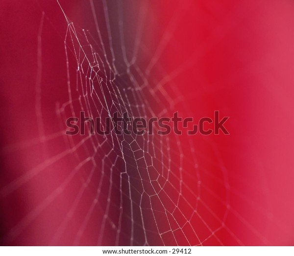 Spiders web on red background. Focus on the center